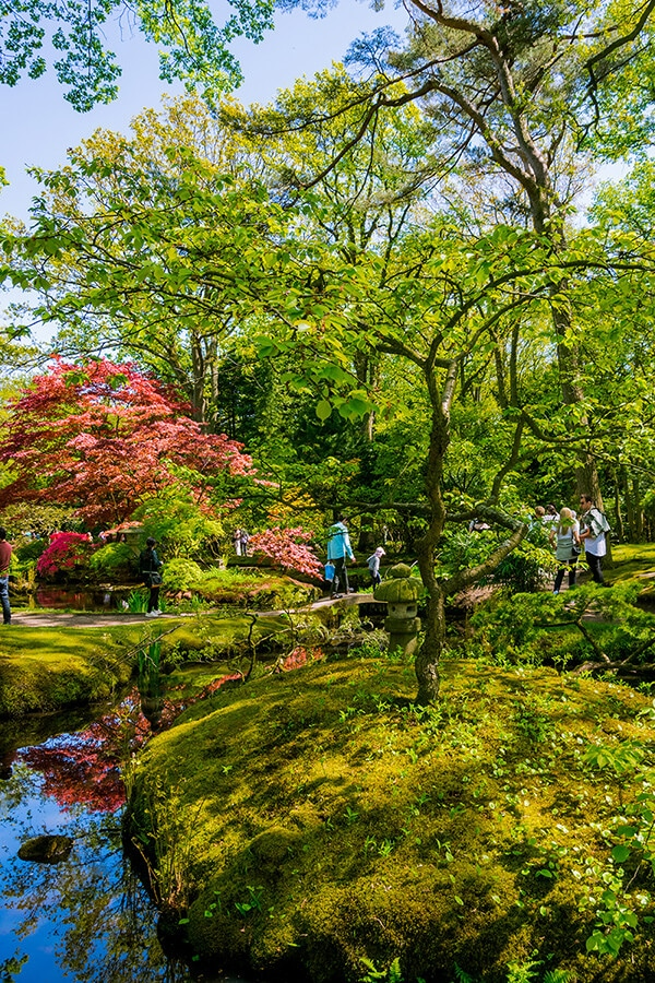 Beautiful Japanese Garden in spring. This stunning garden in the Hague is worth visiting if you love nature! #holland