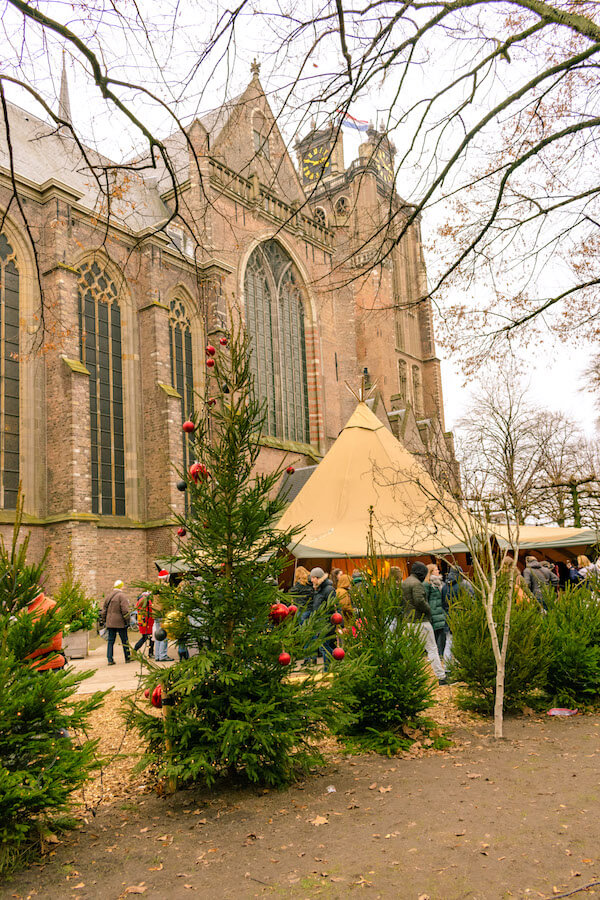Scene surrounding the Grote Kerk in Dordrecht.  This part of the Dordrecht Christmas market is filled with Christmas trees! #dordrecht #holland #travel