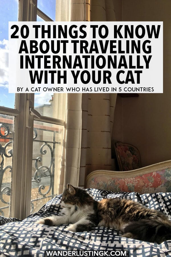 Your ultimate guide to traveling abroad with cats written by an expat who has traveled in five countries with her cat! Includes flying tips and cat travel essentials! #travel #cats #pettravel #cattravel