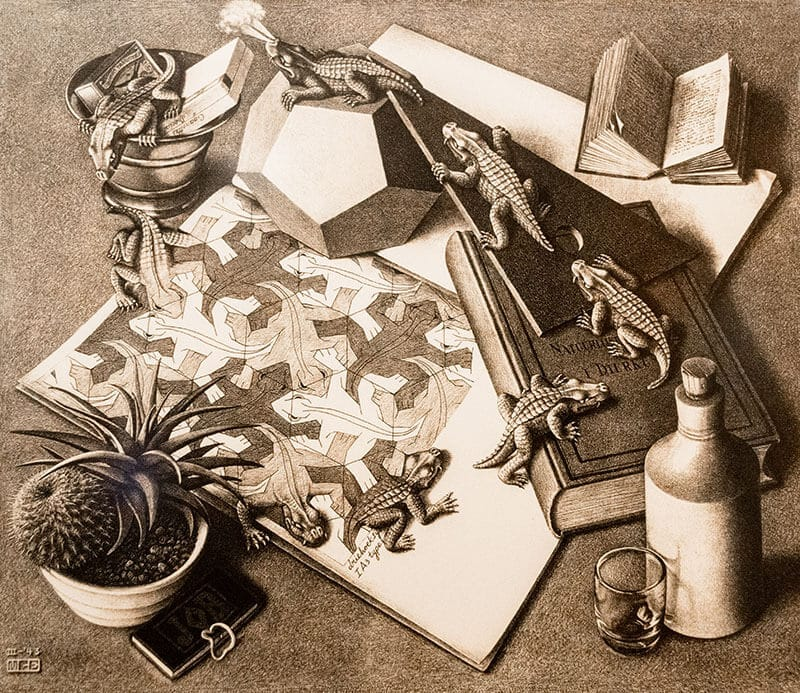 One of Escher's most famous works within the Escher Museum in the Hague! #escher #art #opticalillusion