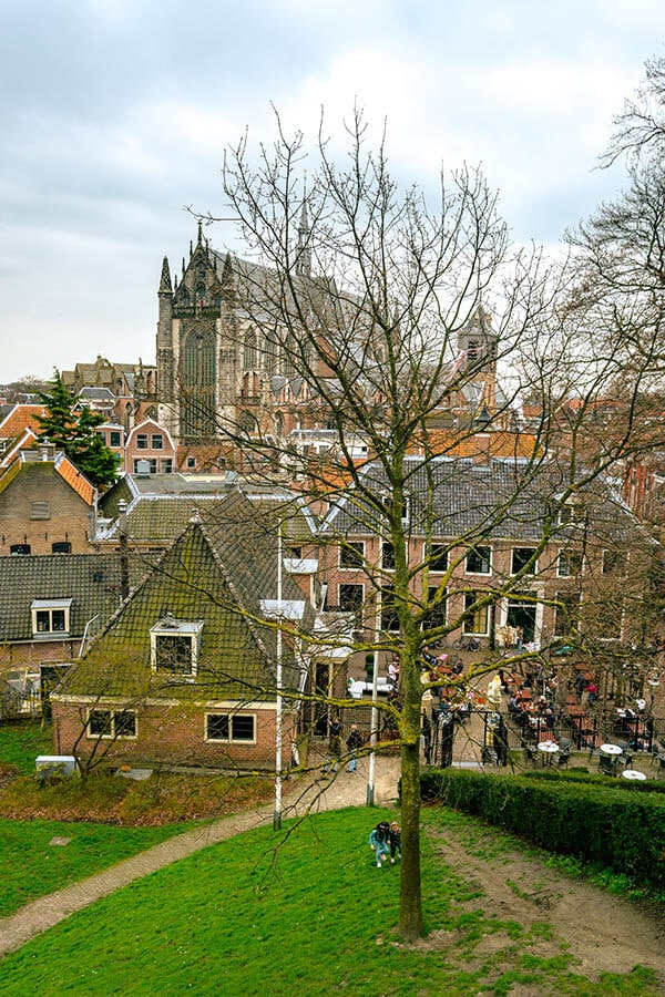 View from De Burcht in Leiden.  This beautiful park is is known as Leiden's castle.  It's one of the best viewpoints in the city! #travel #leiden #holland #netherlands