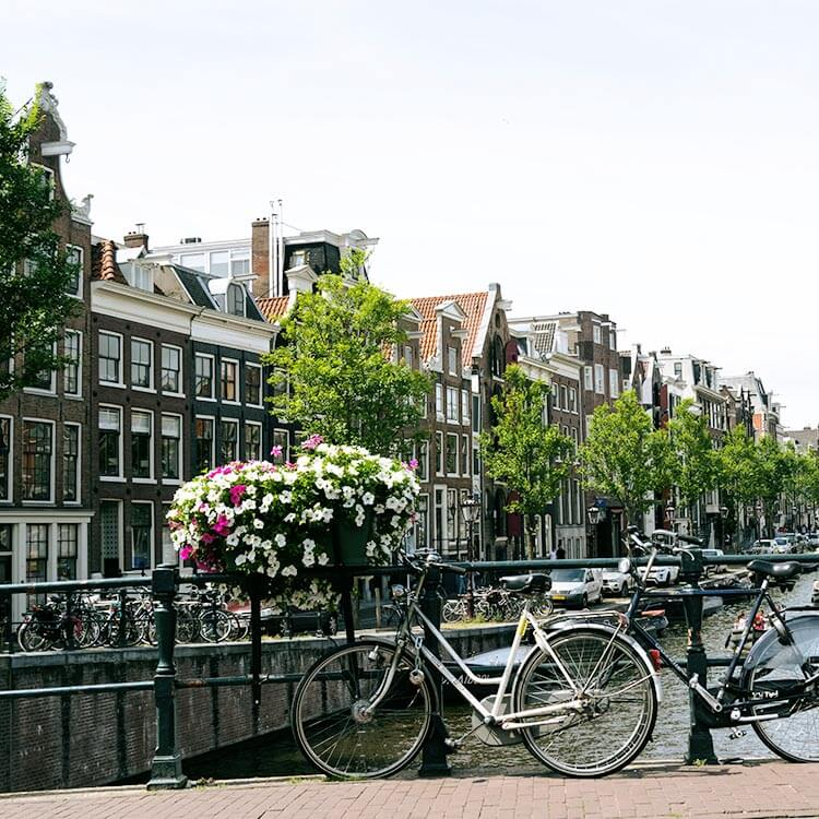 Bicycle with view of Amsterdam canals in May