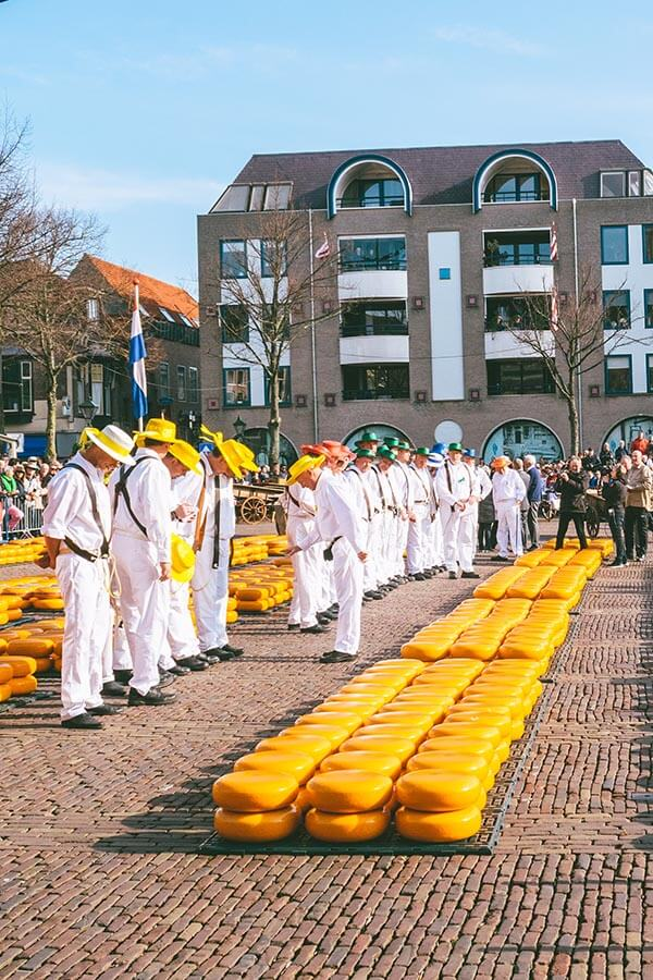 The inspection at the Alkmaar Cheese Market conducted by the Cheese Father of the Alkmaar Cheese Guild in Holland!