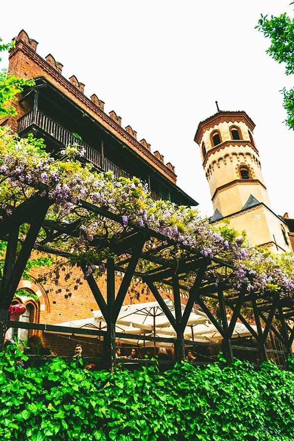 Wisteria with a view of Borgo Medieval, Turin's medieval village within the park that is free to visit!