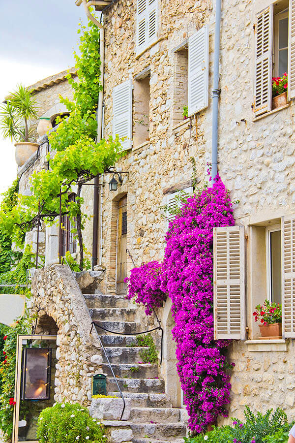 Beautiful French street with house made of stones with green vine and colorful houses