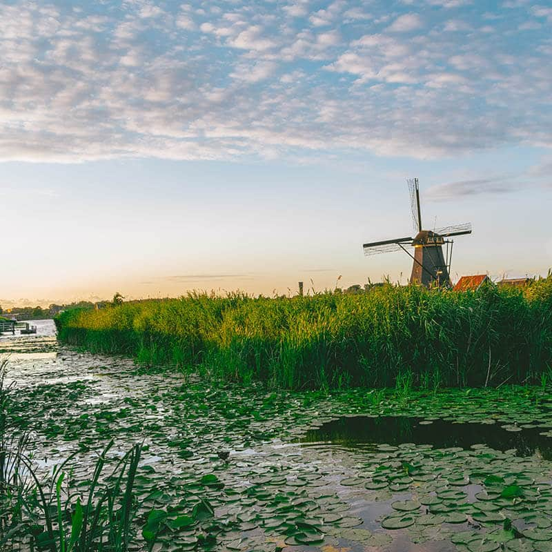 Picturesque landscape surrounding windmill at Kinderdijk, a UNESCO recognized site in the Netherlands